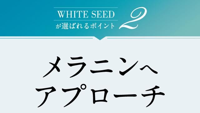WHITE SEEDが選ばれるポイント2 メラニンへアプローチ